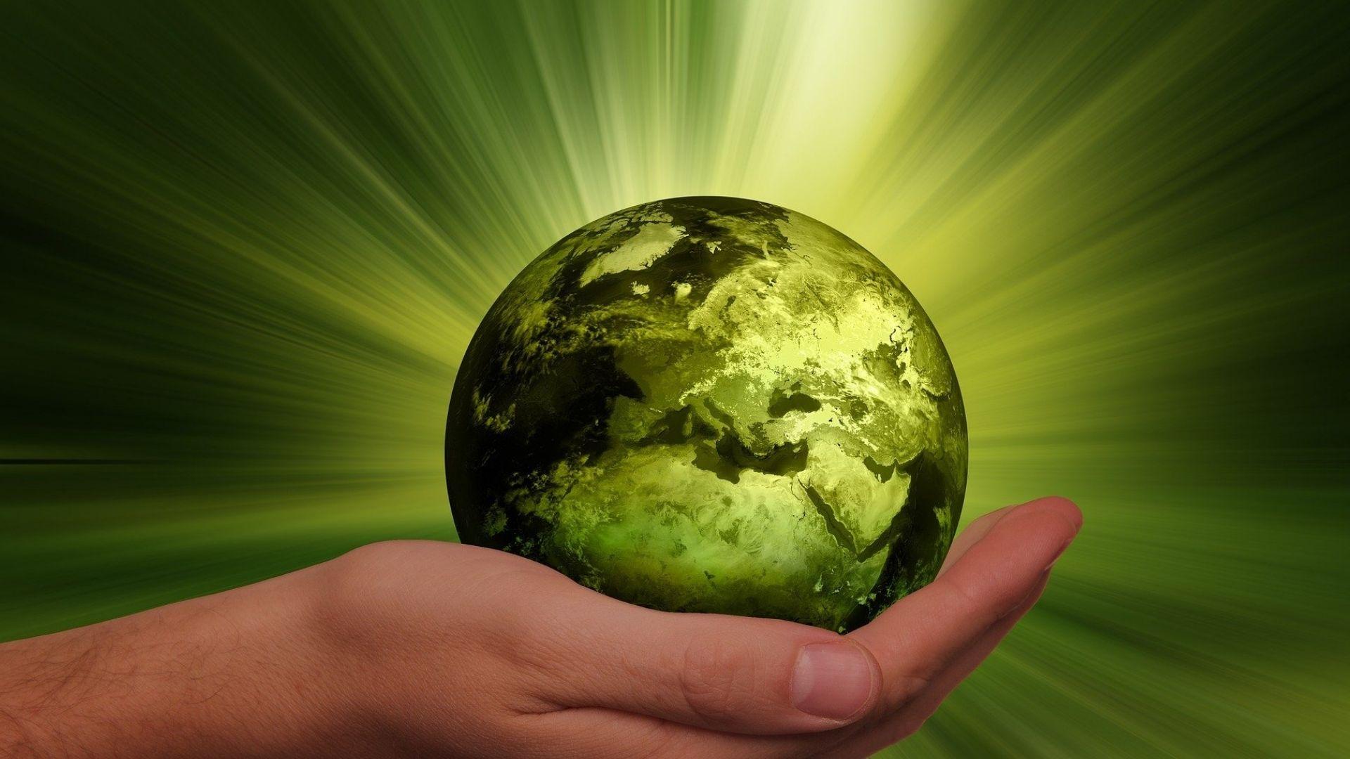 Nachhaltigkeitsstratgie - Optimierung und Beratung